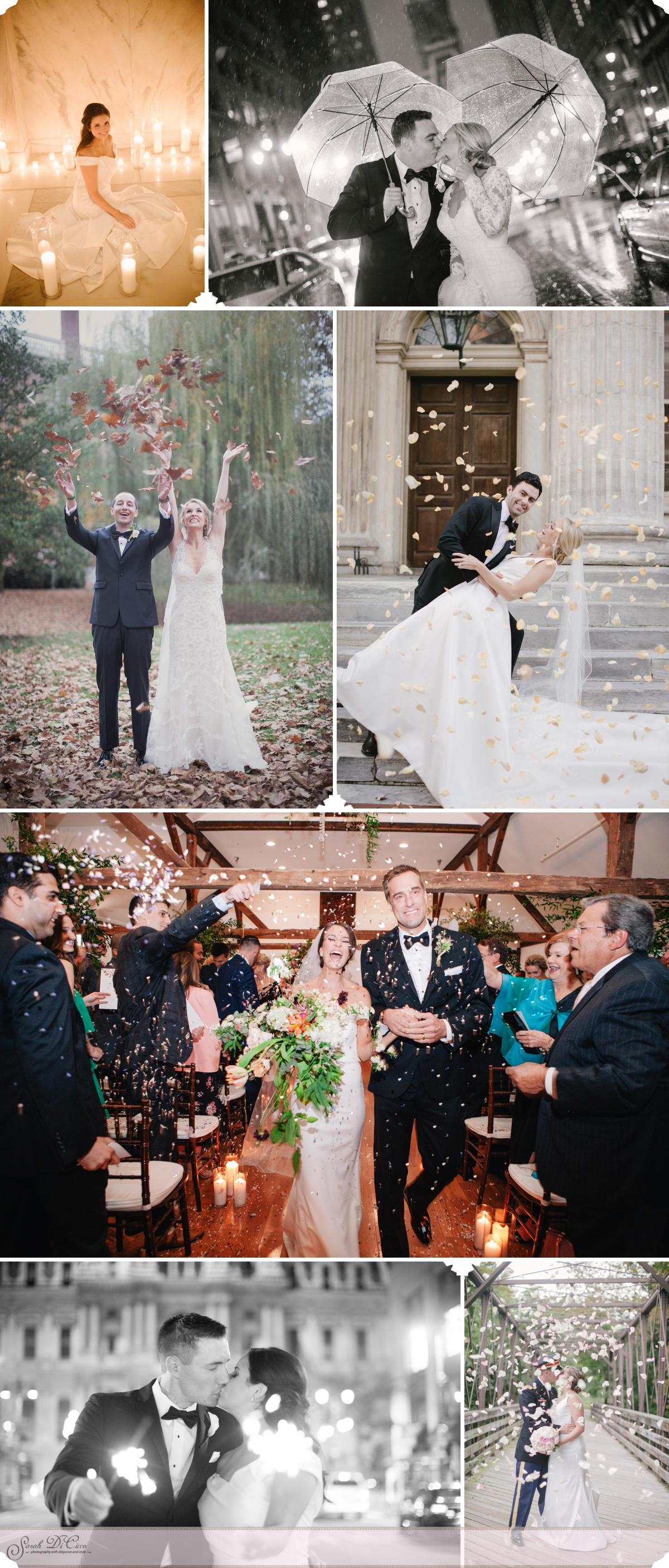Petals and Sparkles Sarah DiCicco Photography - Year in Review 2018