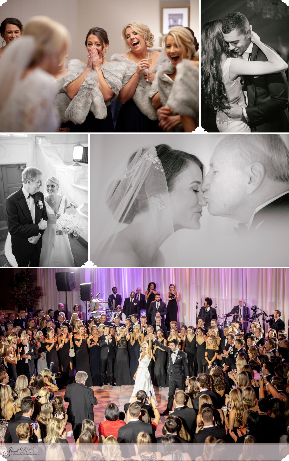 Wonderful Moments Sarah DiCicco Photography - Year in Review 2018